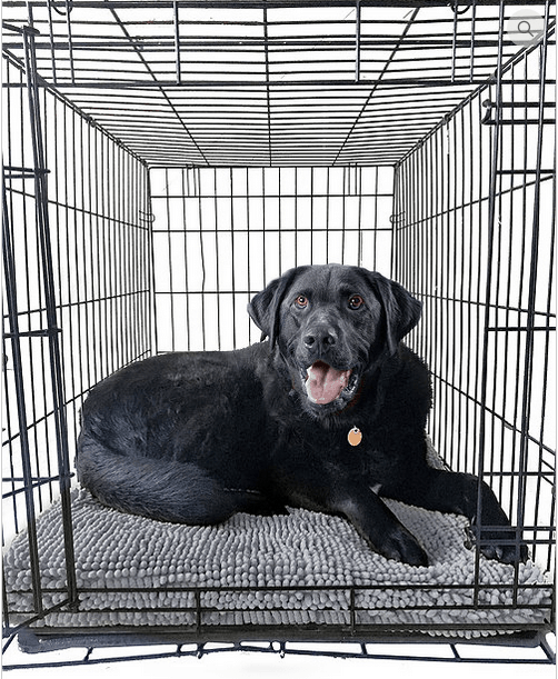 Soggy Doggy Crate Mat